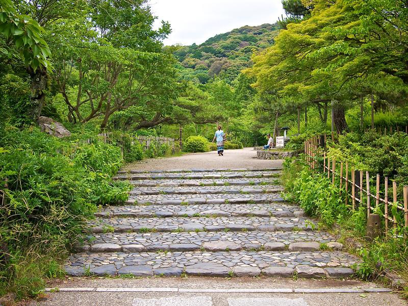 Maruyama Park - Kyoto, Japan