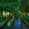Evening Canal, Pontocho - Kyoto, Japan