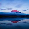 The Red Fuji