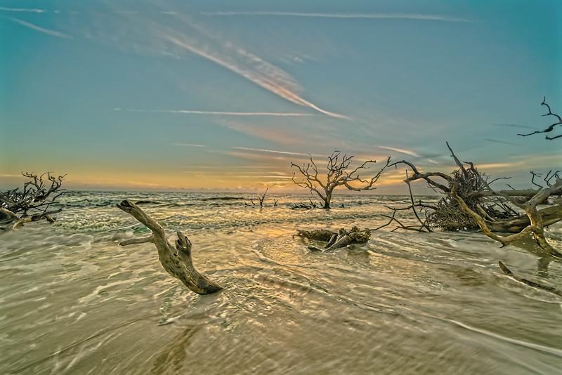High Tide Surf