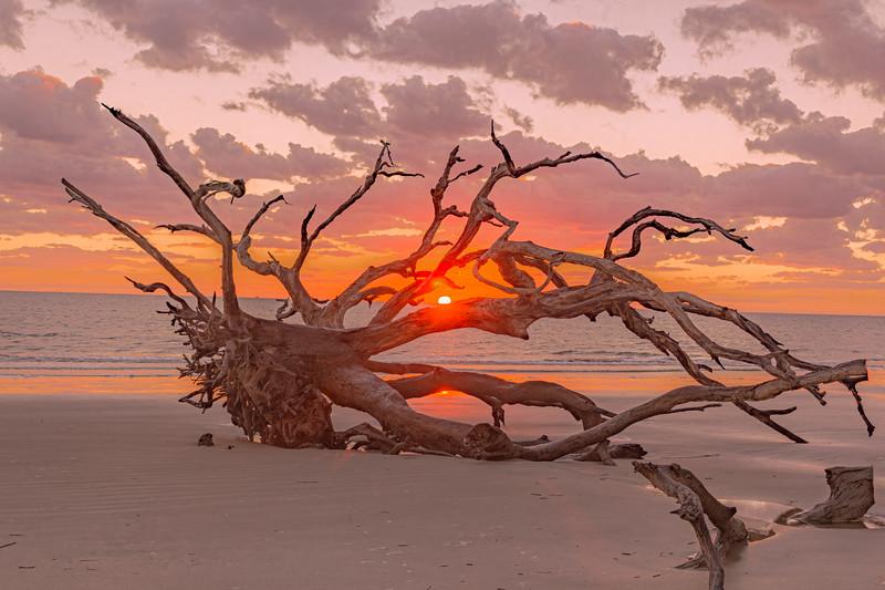 Morning Warmth Touches a Beach