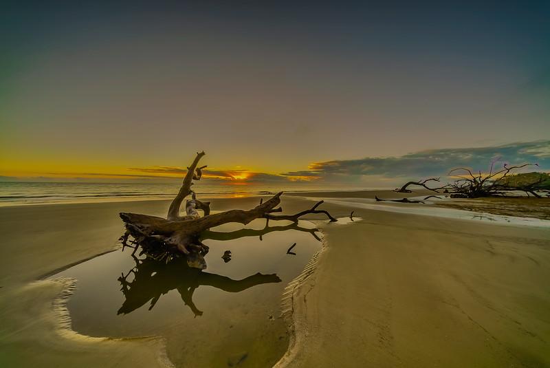 Driftwood Pool