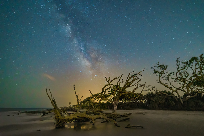 Milky Way and Driftwood