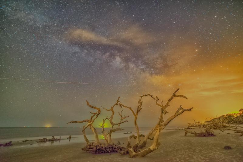 Driftwood Milky Way