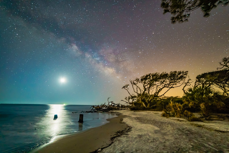 Moon Lit Beach and Milky Way