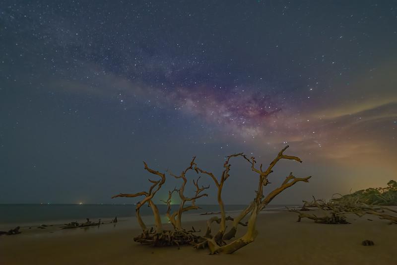 Driftwood Under Milky Way Cloud