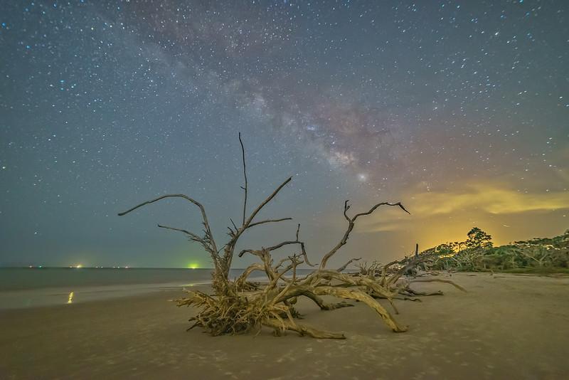 Sparkling Nightlights above Driftwood Beach