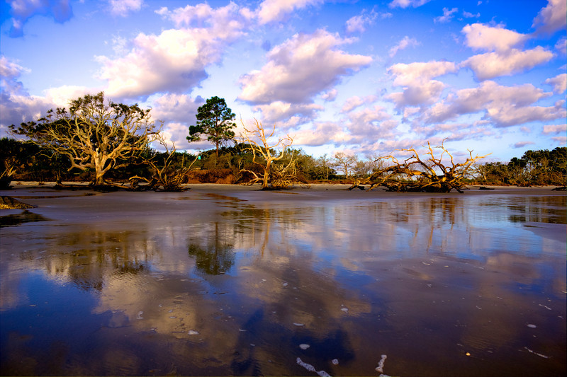 Reverse Sunrise Driftwood Beach Jekyll Island Ga. Canon T2i HDR Photomatix