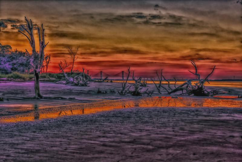 Jekyll Island Driftwood Beach, Sidney Lanier Bridge at Sunset