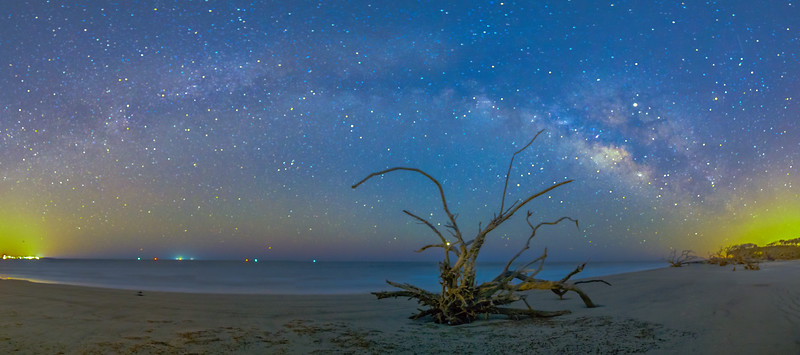 Milky Way over Driftwood