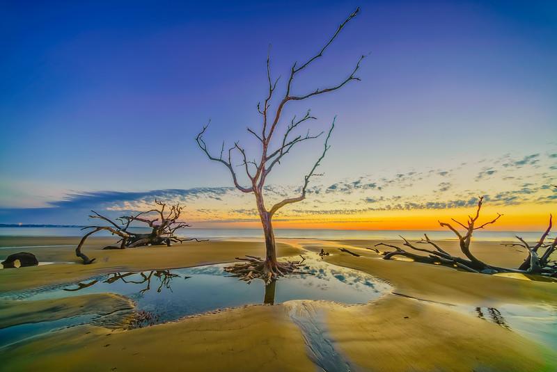 Standing in Still Waters