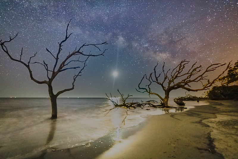 Crazy in March COP9