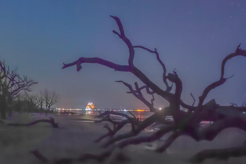 Driftwood Beach Nightlights