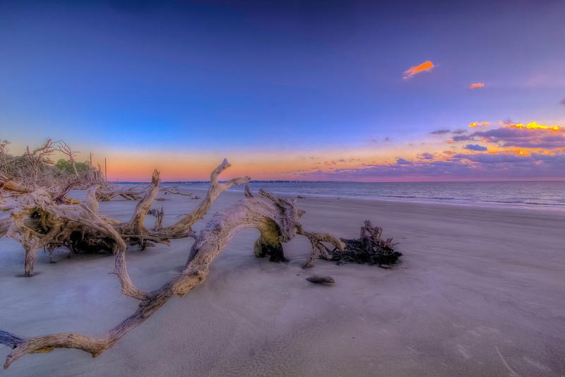 Daybreak Driftwood Beach