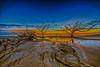 Low Tide Sunrise Blue Hour