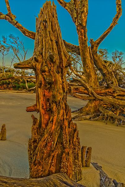Red Hound Dog Stump