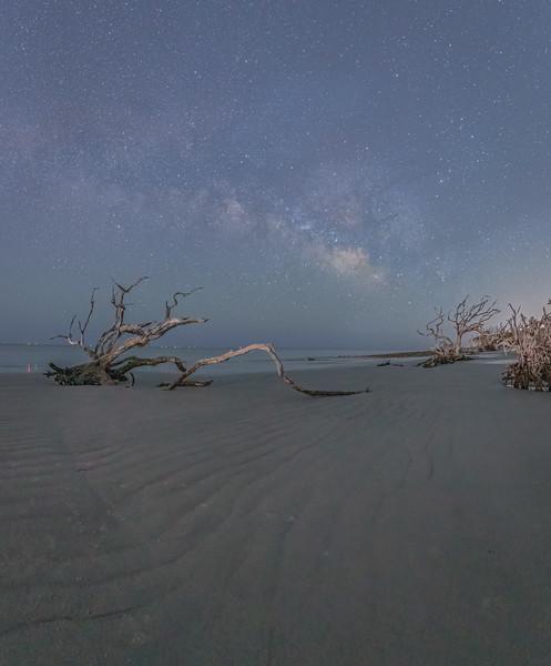 Stars Along the Coast