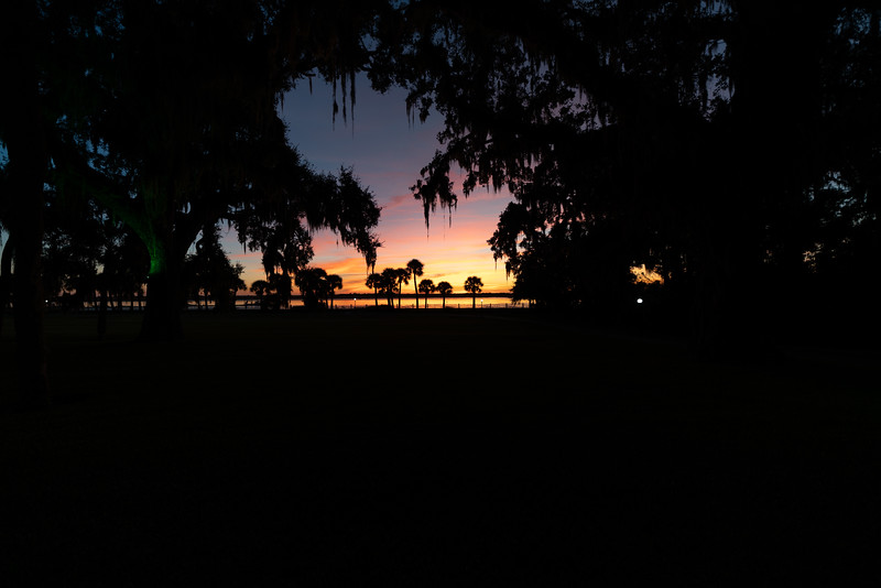 Under the Oaks Sunset II