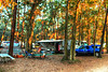 Jekyll Island Campground Southern Autumn Fire