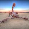 """Photo taken by Jen Faith from  <a href=""""http://www.CruisingCamera.com"""">http://www.CruisingCamera.com</a>"""