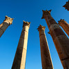 JERASH. ROMAN CITY. RUINS OF THE TEMPLE OF ARTEMIS. JORDAN. [3]