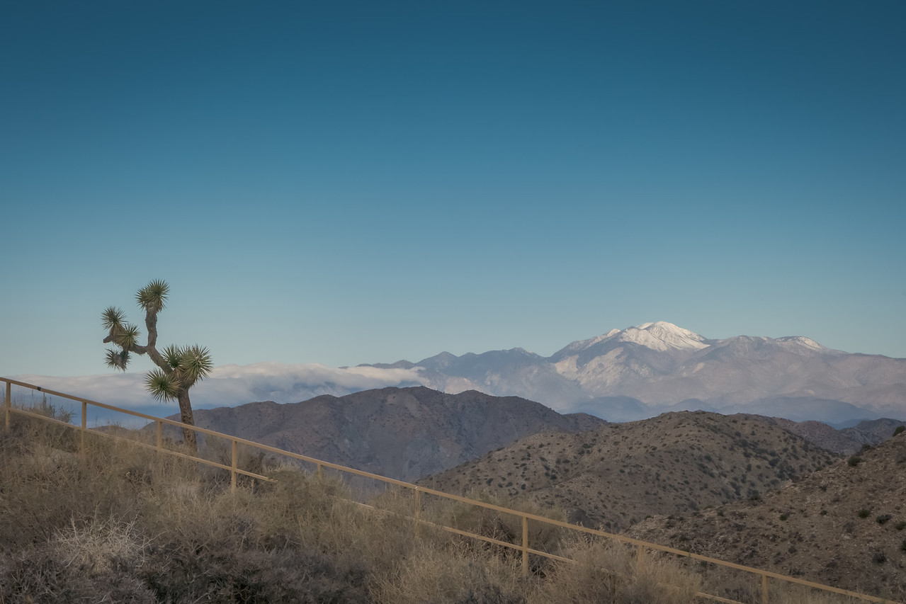 Mt. San Jacinto across the valley from Joshua Tree