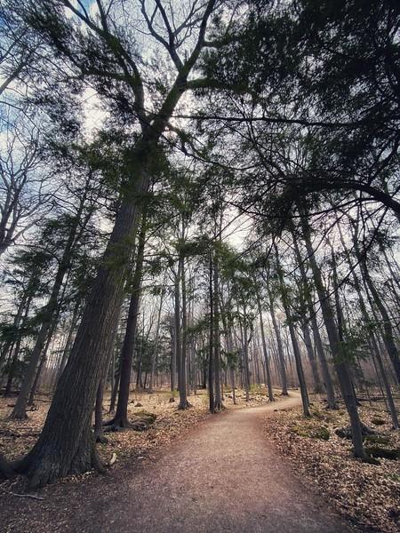 April 18  Beamer Conservation Area