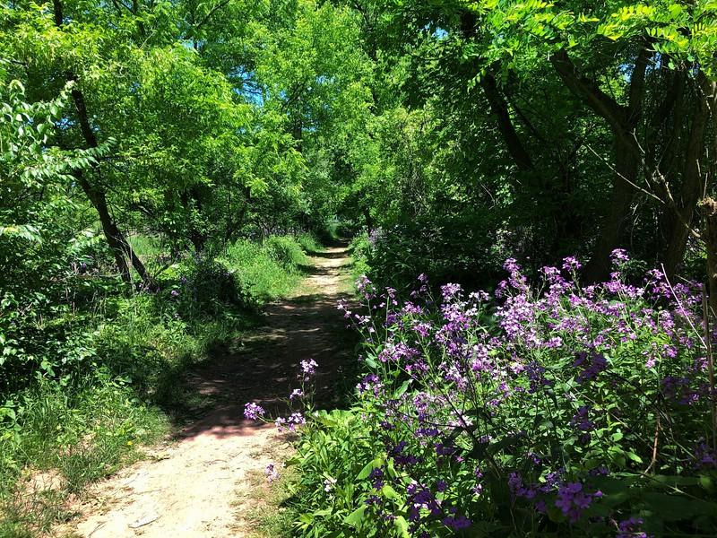 June 16  Hendrie Valley
