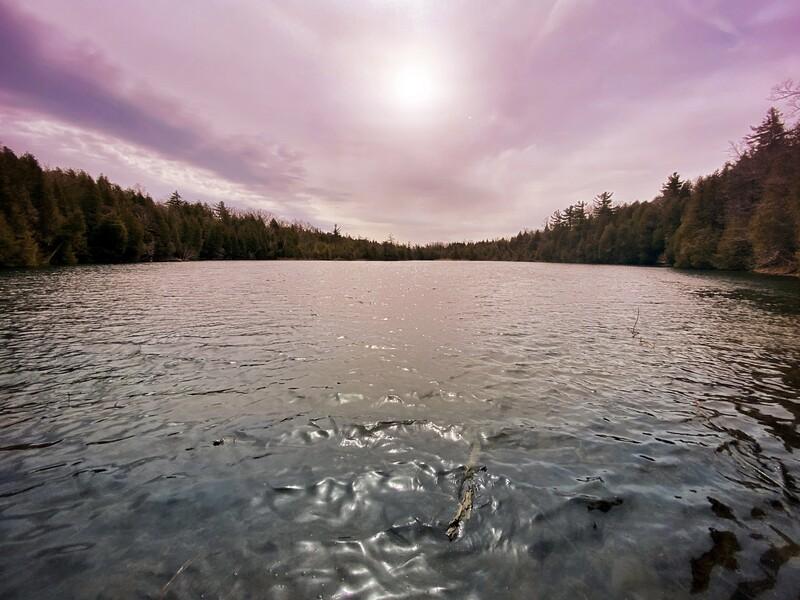 March 3 Crawford Lake
