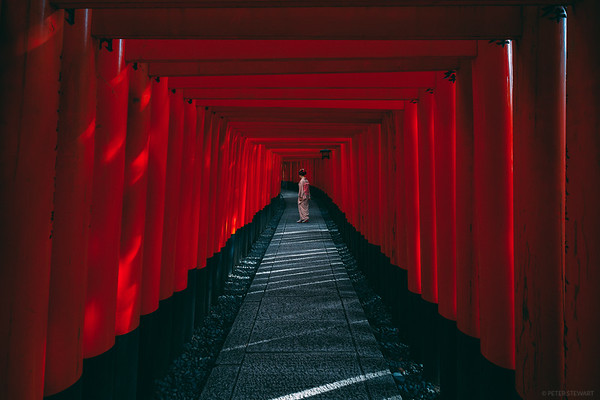 The Red Pathway