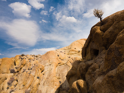 Alabama Hills Afternoon