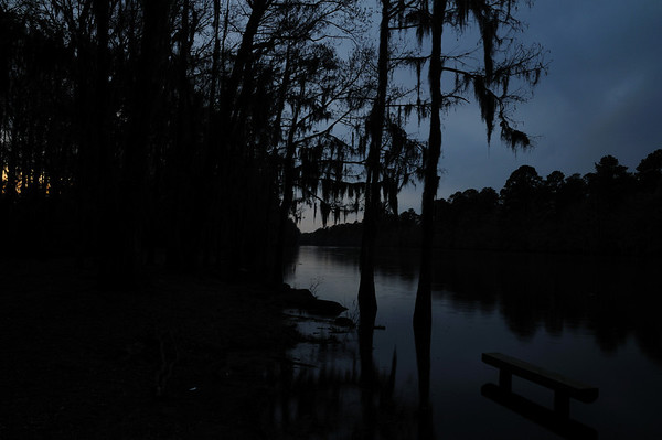 Caddo Lake at Night