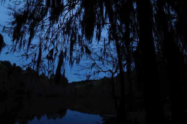 Caddo Lake at Night