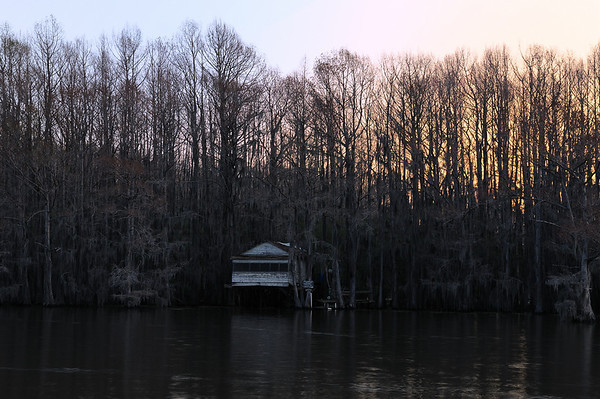 Caddo Lake Favorites
