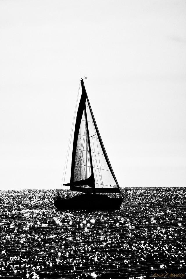 Glistening Sail