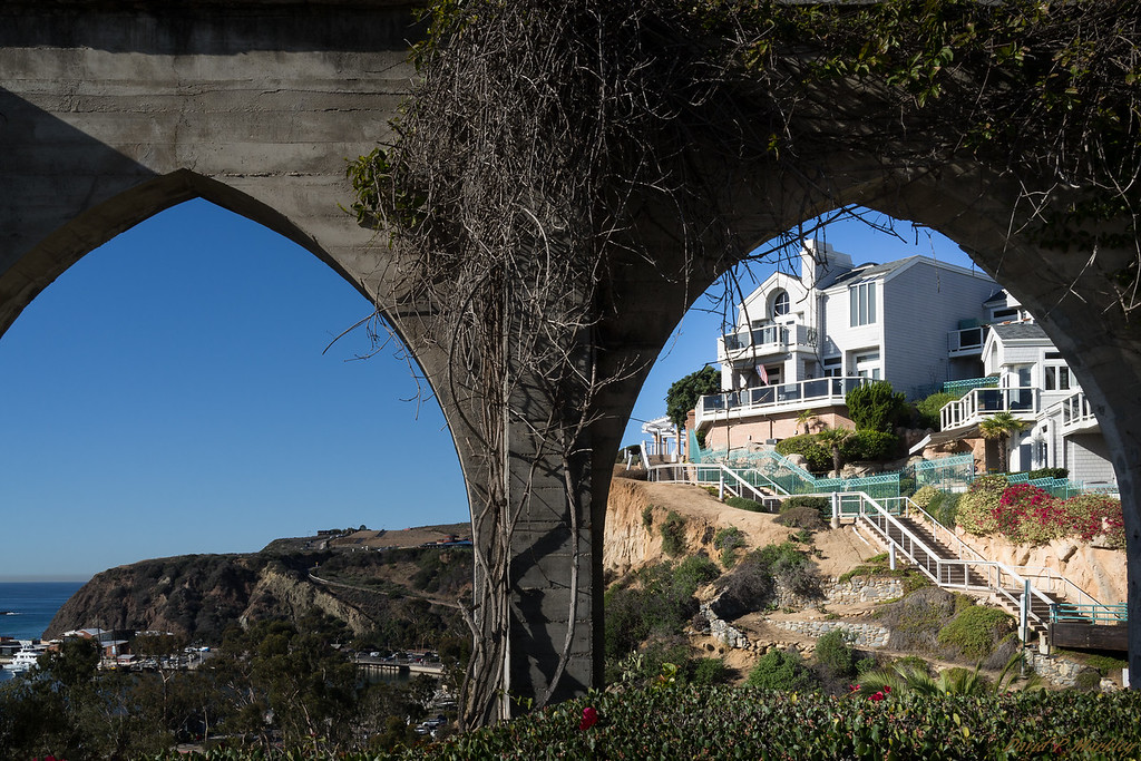 Arch View