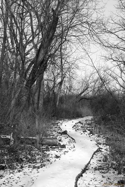 Thin Path