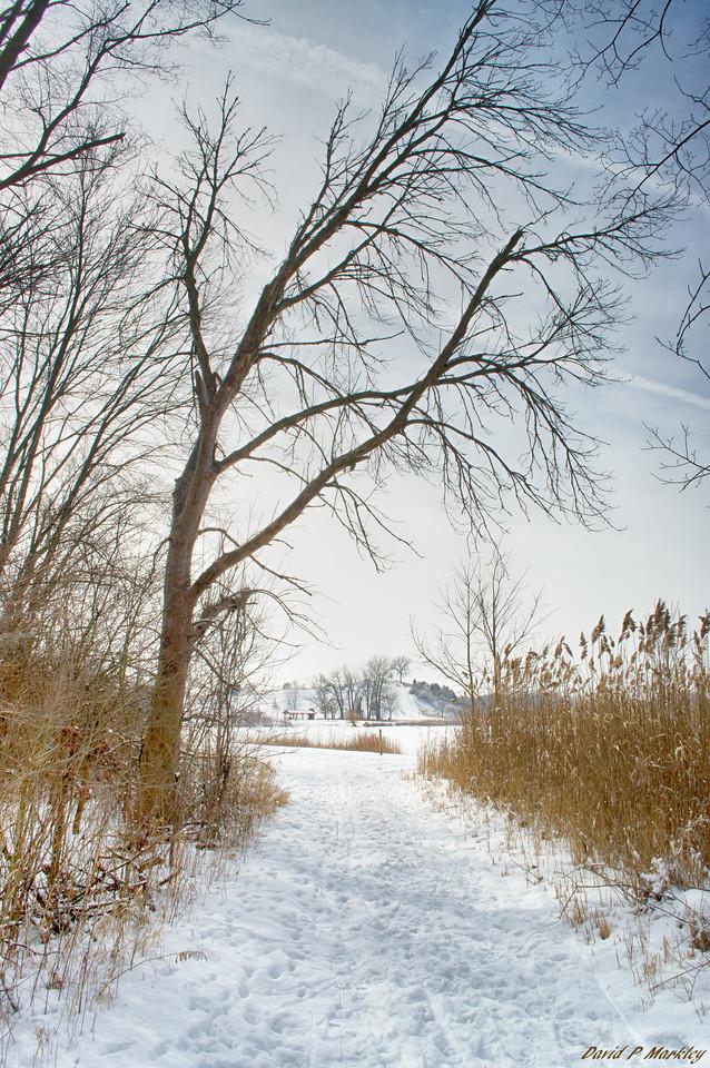 Stepping Path
