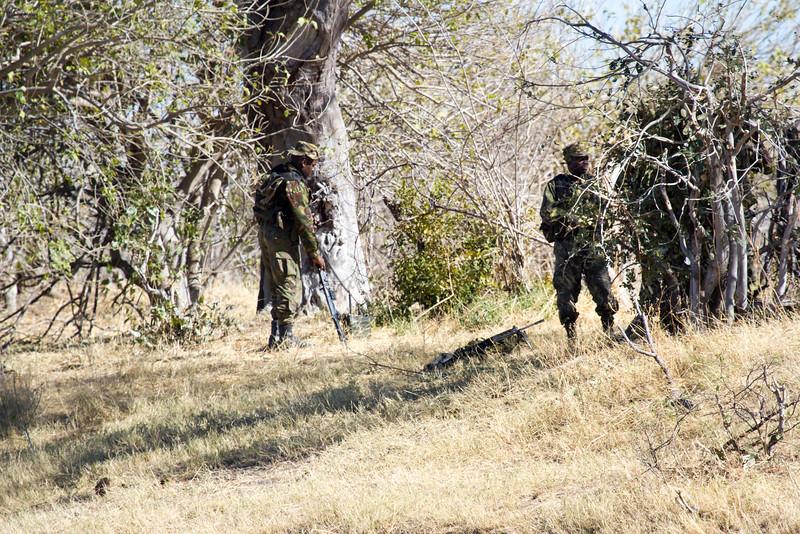 Anti-Poachers