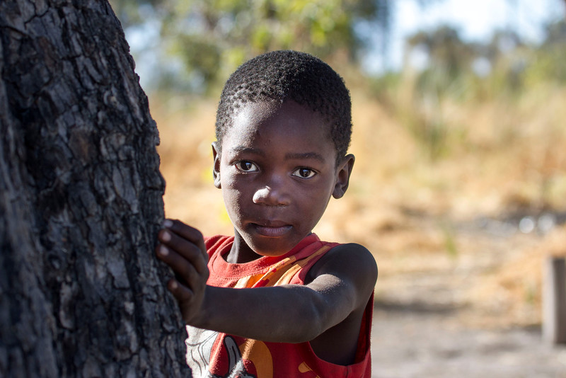Faces of Xaxaba, Okavango Delta, Botswana Africa