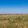 Landscape of Kazakhstan
