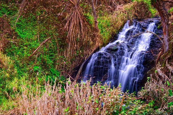 Upper Queens Bath Waterfall