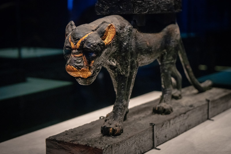 Detail of the Panther