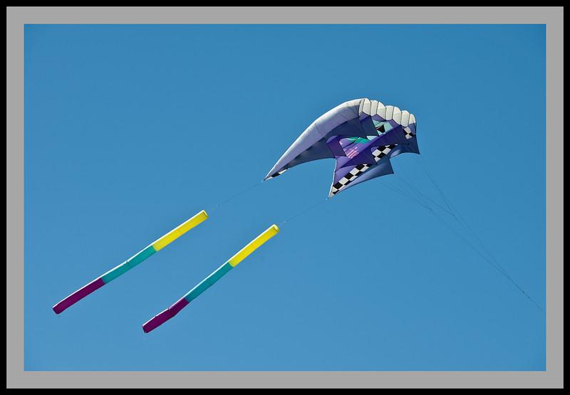 Kite Festival -4835