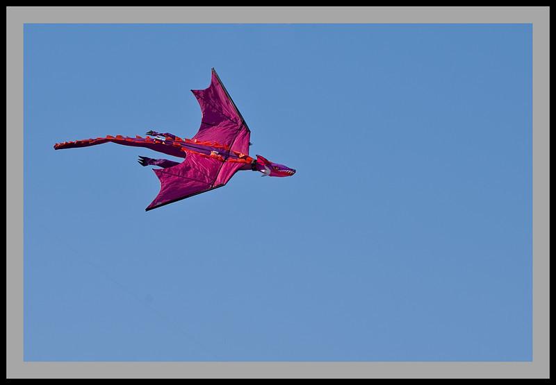 Kite Festival -5038
