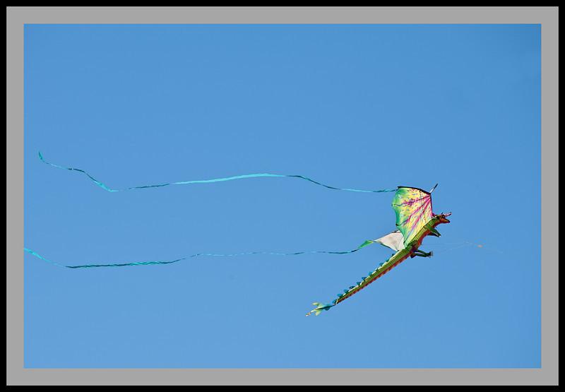 Kite Festival -4952