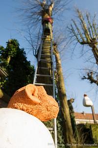 Maarten Fleuren - Jeroen Bosch tuin 2016 (05)