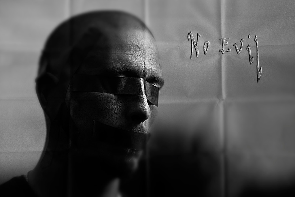 286/365 No Evil - © Simpson Brothers Photography