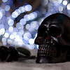 "294/365 Poor Yorick - © Simpson Brothers Photography<br /> <br /> Shot with a Canon 40D, Sigma 85mm f/1.4, 580EX on camera set to off, 420EX camera left with 3""x4"" softbox and CTO, CTY gels to match the LED's in the background, bounce board camera right, flag camera left."