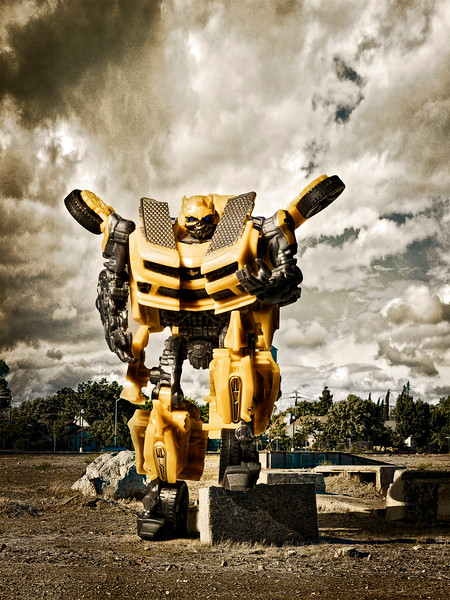 144/365 Bumblebee - © Simpson Brothers Photography